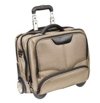 Dermata Business Trolley 3456NY champagner