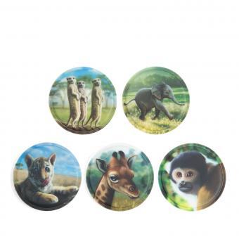 ergobag Kletties Klettie-Set matt, 5-teilig Zoobabies